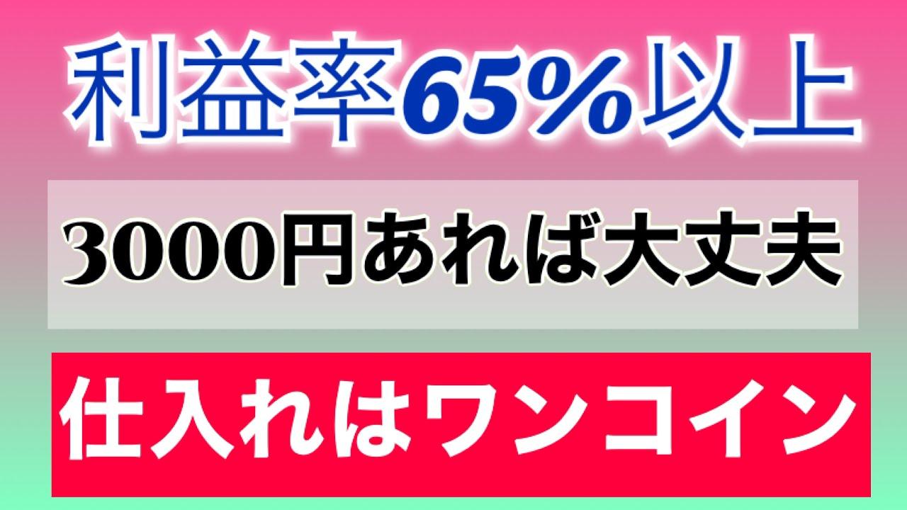 初心者せどり必見【全て500円以下】総額3,000円の仕入れで〇万円に増やせました!