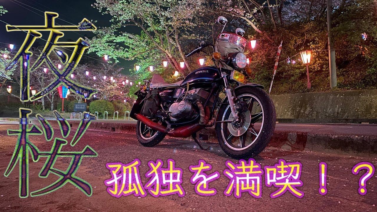 GT380で夜桜を見に行く!!【モトブログ】