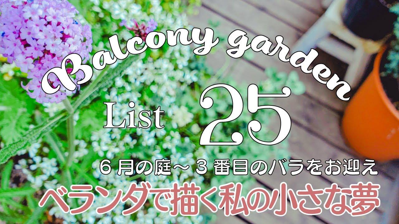 SUBガーデニングブログ/おしゃれな小さな庭を目指して/私の小さな夢/初心者の庭造り/ベランダガーデニング/a small dream in a Japan balcony garden
