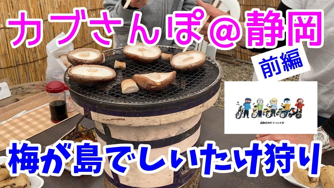 モトブログ#68【おばさんツーリング部】<前編>カプ散歩@静岡:梅が島でしいたけ狩り