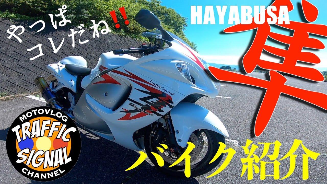 【TS Motovlog #131】GSX1300R HAYABUSA バイク紹介【モトブログ】