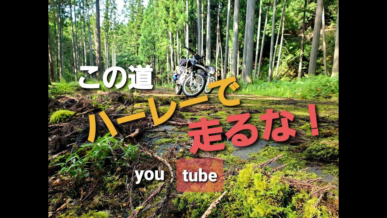 #2オフ車 で森林アタックFree Run Chopper #モトブログ